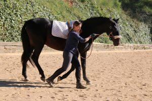 melin farriols equitacion conectada