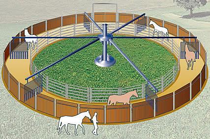 noria para caballos