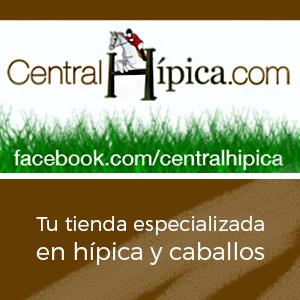 https://www.centralhipica.com