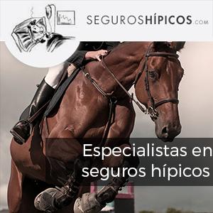 http://www.seguroshipicos.com