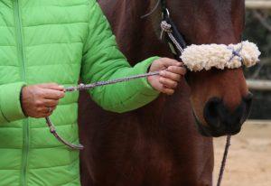 equitacion centrada 1