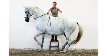 Hanna Engström trabajando el piaffé (www.ekeskogs-ridingacademy.com)