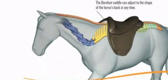 Monturas adaptables: Nueva generación de monturas adaptables al dorso y a los movimientos del caballo