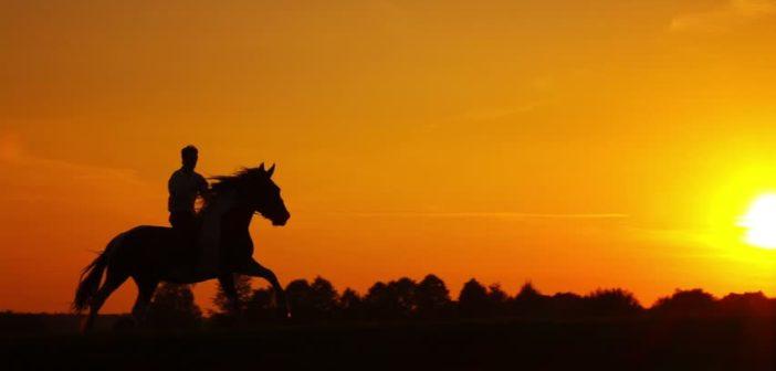 El lenguaje corporal en la equitación