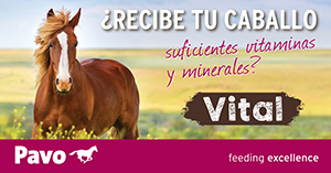 http://www.pavo-horsefood.es