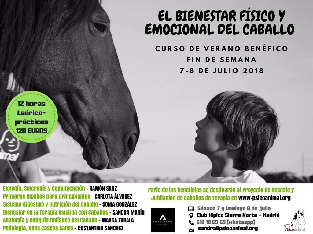 El bienestar físico y emocional del caballo