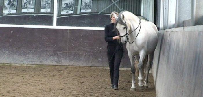 Equitación Centrada: movimientos laterales y trabajo en dos pistas