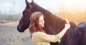 ¿Cómo interpretan los caballos las emociones humanas?