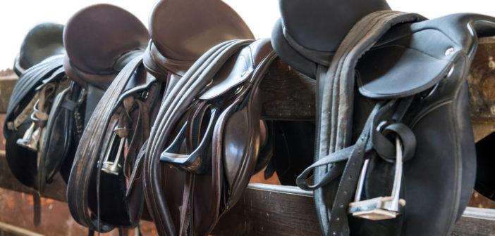Cuatro puntos básicos para saber si la montura se adapta al caballo