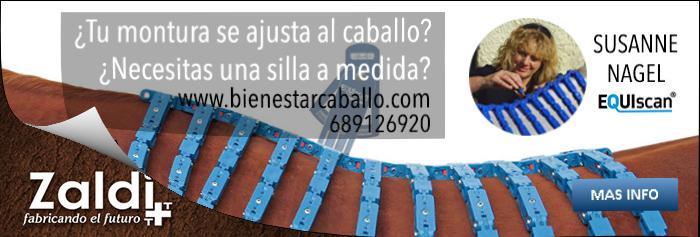 http://bienestarcaballo.com/