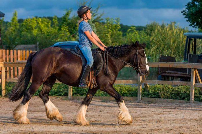 Jinete centrado sólo en hacer avanzar al caballo