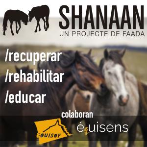 http://faada.org/proyecto-shanaan