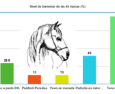 Estudio del índice de bienestar equino en centros de Cataluña