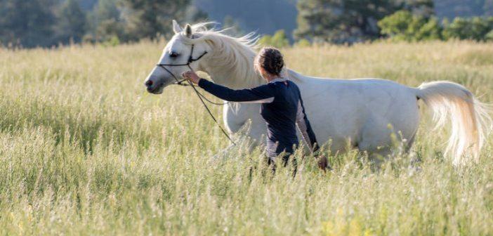 Conexión mental: cuando tu caballo y tú sois uno