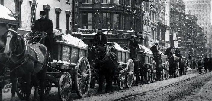 El problema del estiercol de caballo en las ciudades de finales del S.XIX