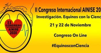 II Congreso Internacional AINISE