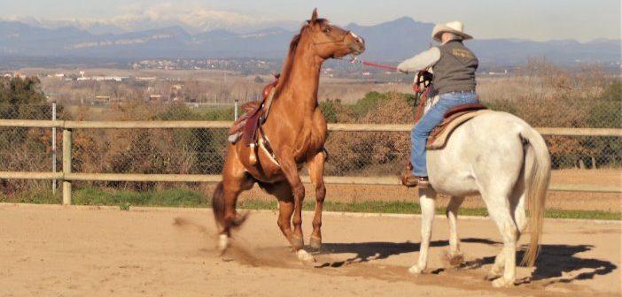 Posponer que tu caballo se enfrente a sus miedos puede consolidarlos
