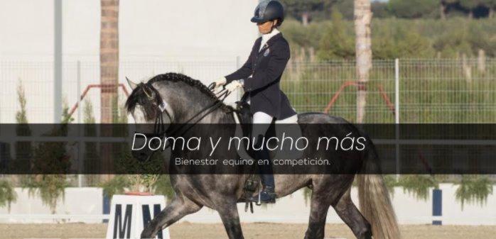 """""""Doma y Mucho +"""" ya tiene fecha y sedes sobre el Calendario  de concursos de Doma Clásica"""